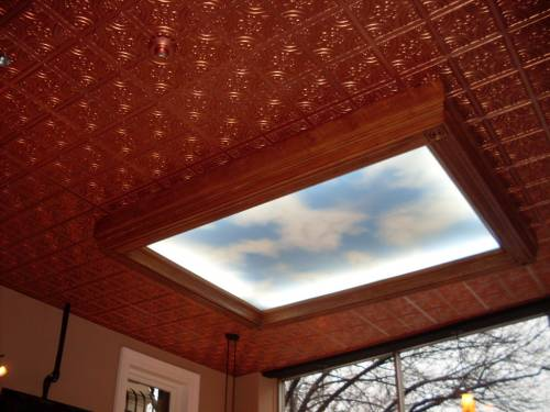 Ceiling Tile Plastic #205