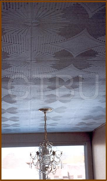 dining-room-s-2-ceiling-tiles