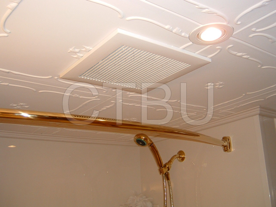 Get creative with bathroom ceiling renovation.