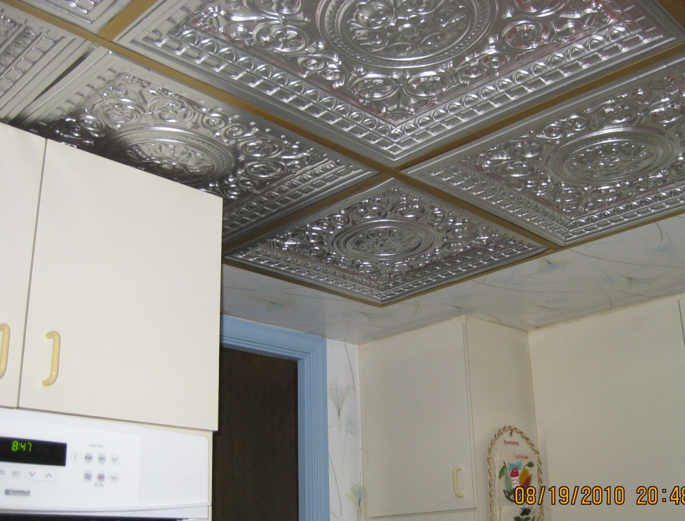 Plastic Drop Ceiling Tiles 979 x 744