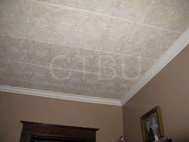 Superior Living Room Ceiling Tiles