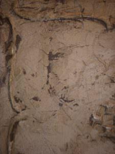 Paint Able Ceiling Tiles Antique !