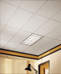 Blog On Ceiling Tiles Back Splashes Projects With Them Part 2