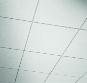Ceiling Tiles By Us Usg Astro Climaplus Acoustical
